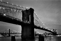 Titel: NY Bridge n°, Kunstenaar: Teun Voeten - New York
