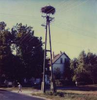 Titel: Hongarije 1, Kunstenaar: Aurore Genicq