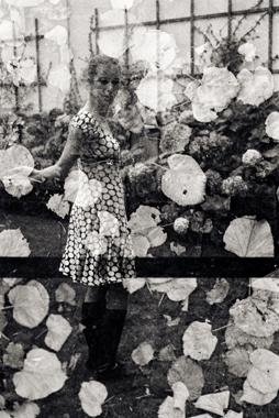Titel: Faire Confiance, Kunstenaar: Marianne Dardenne - Harmonie
