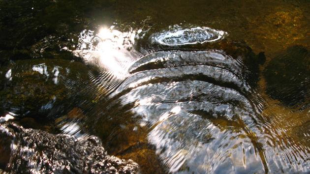 Titel: mysticwater-vanchapmanlvg-3, Kunstenaar: van Chapman - Mysticwater