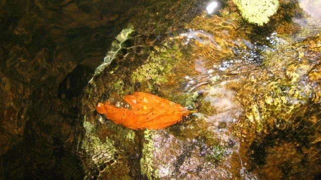Titel: mysticwater-vanchapman-lvg7, Kunstenaar: van Chapman - Mysticwater