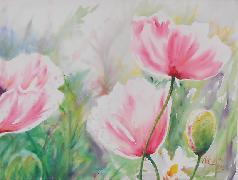 Titel: Trois coquelicots roses, Kunstenaar: Everard de Harzir, Anne